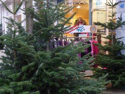 42-plus-grosse-groessen-damen-mode-oldenburg-uebergroessen-weihnachten-haarenstrasse